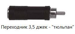 джек-тюльпан