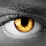 Под всевидящим оком систем видеонаблюдения